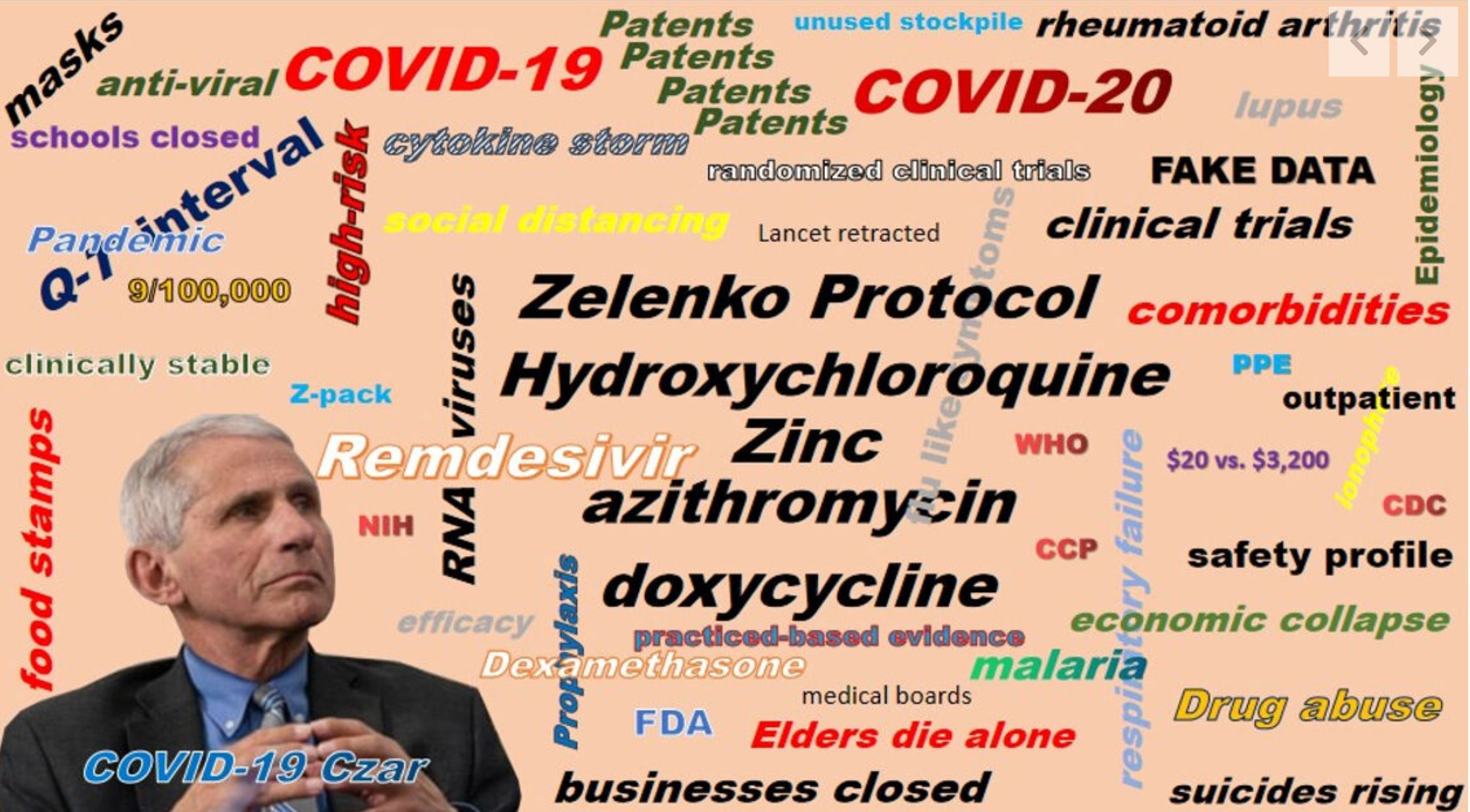 COVID Related 2020 08 16 - Pandemic Scrapbook - Doctors Pen Open Letter to Doctor Fauchi since the Covid Pandemic happened Hoey Team eXp Realty
