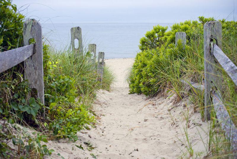 sand walkway heading to beach