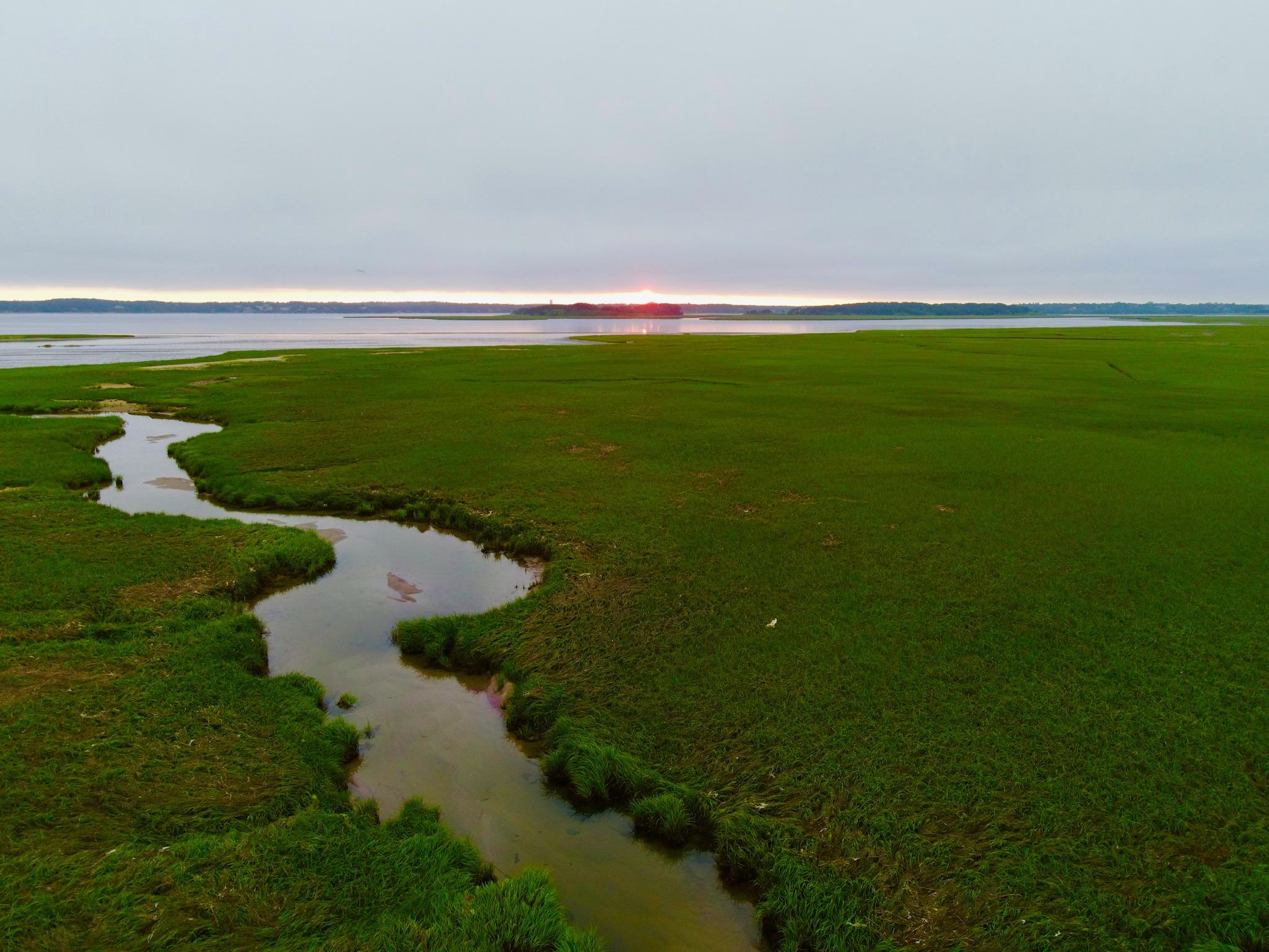 green marshland with ocean views