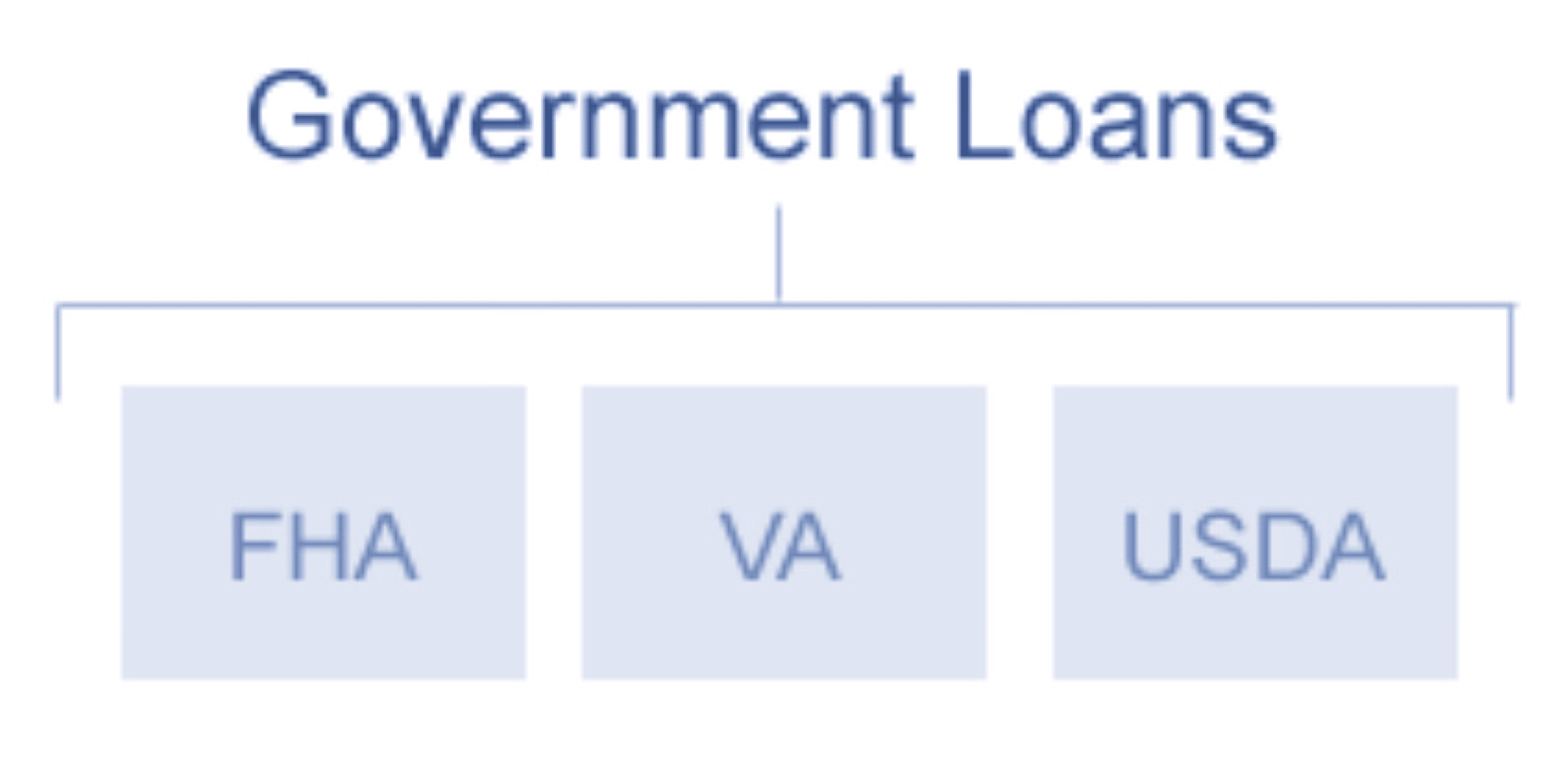 Government Insured Loans