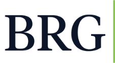 BRG Real Estate Logo