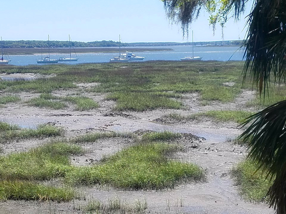 Pluff mud is the smell of the Lowcountry