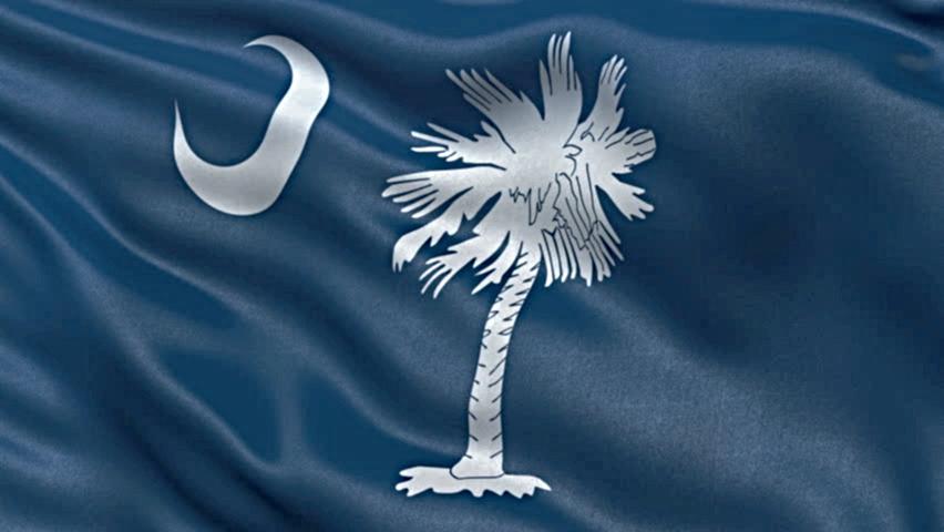 South Carolina Flag Beaufort SC