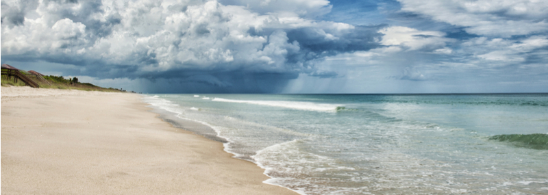Turtle Bay – South Beach Living