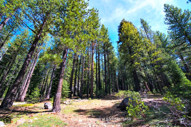 Tahoe Donner Truckee CA Real Estate Properties for Sale - This Tahoe Donner lot for sale offers you a chance to enjoy the Truckee lifestyle in all seasons!