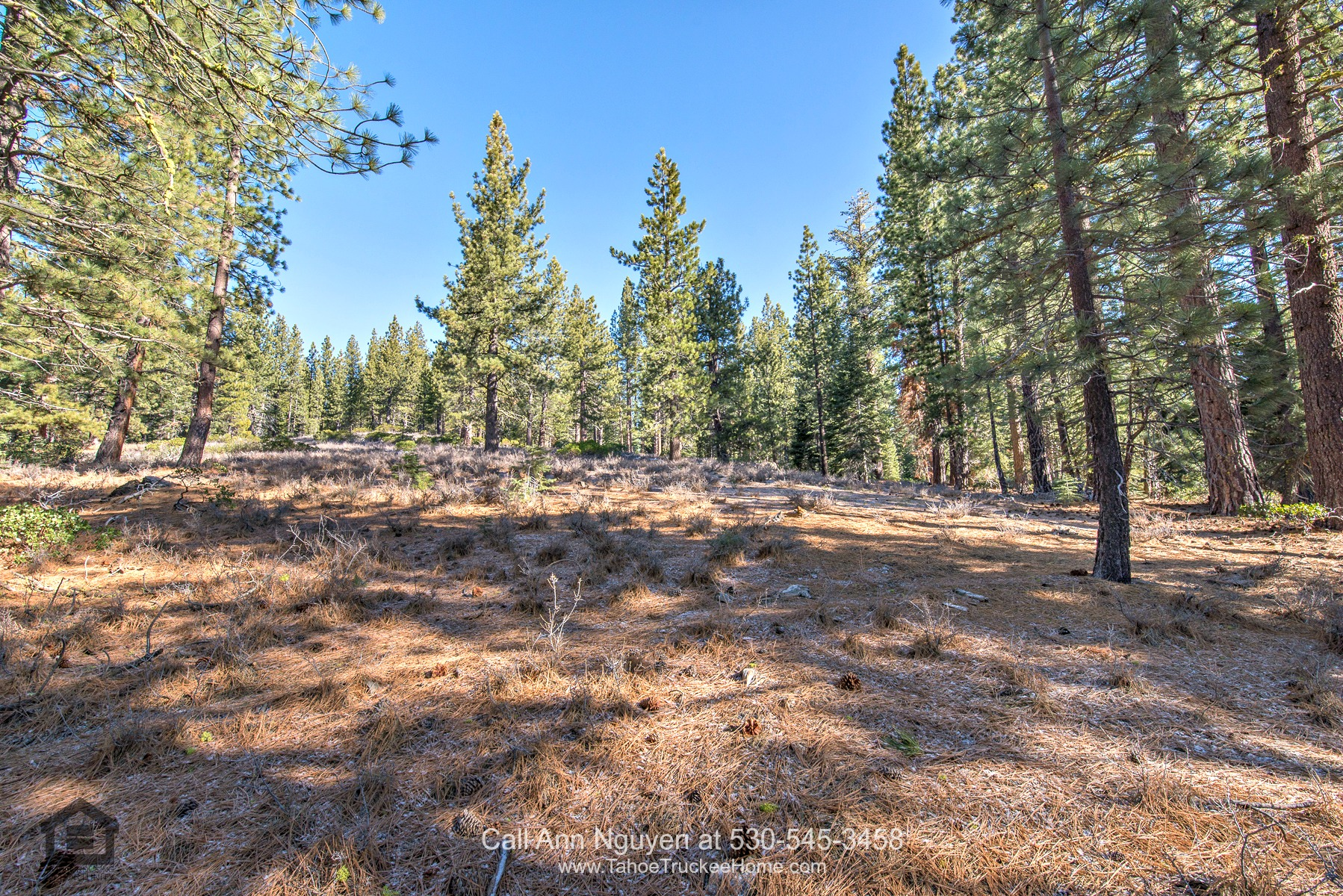 Lot for Sale in Truckee CA - This Truckee CA lot for sale delivers ultimate privacy and retreat in an idyllic mountainside setting.