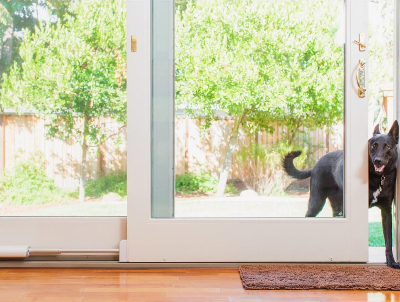 Smart Home Tech CES Las Vegas 06 Pet Smart Doors Hoey Team eXp Realty