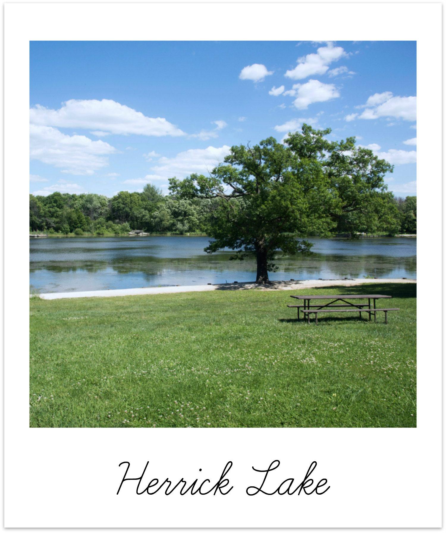 Wheaton Illinois Herrick Lake BRIX Picks