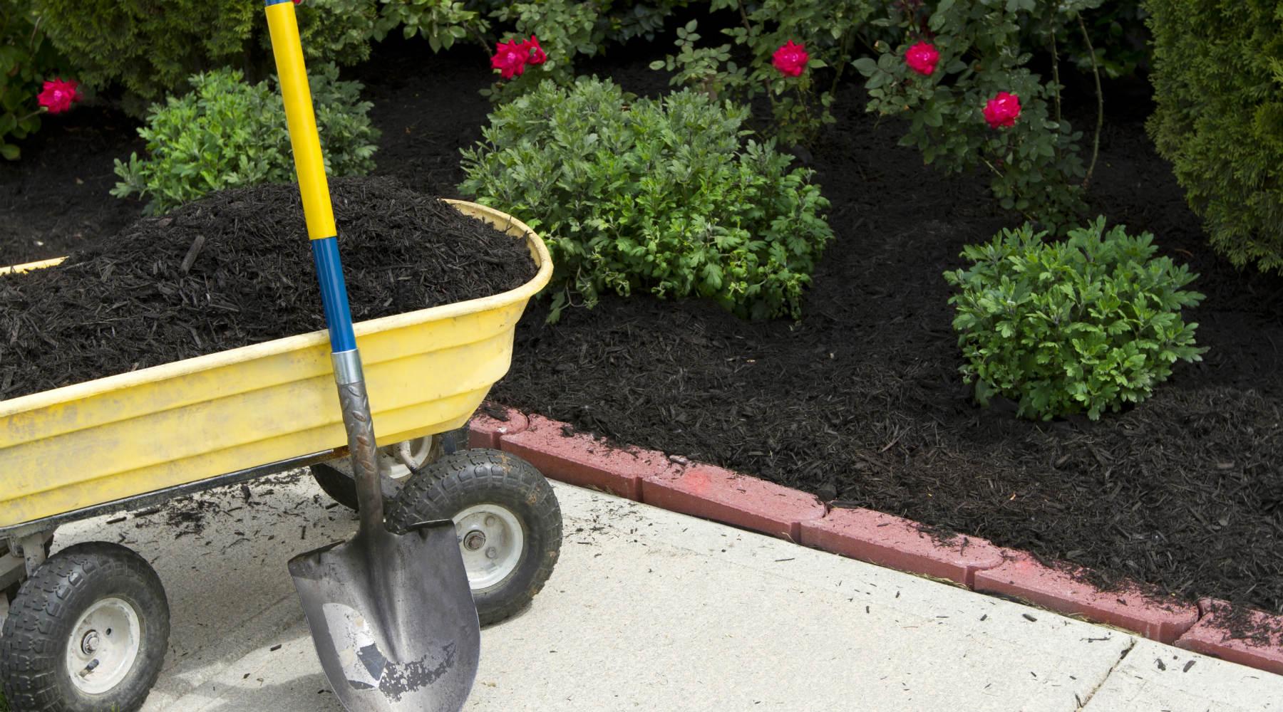 Mulch yellow wagon, shovel, flowers