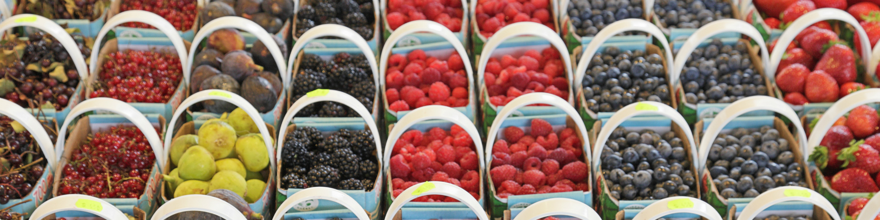 Baskets of berries at farmers market