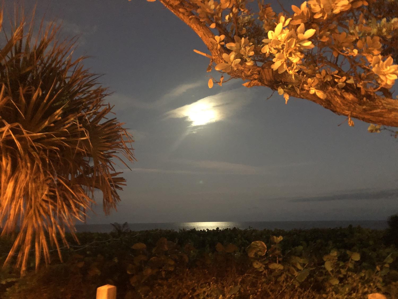 Beach Full Moon