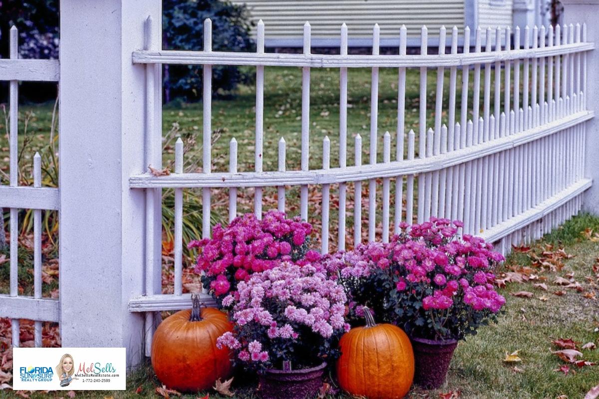 Pumpkin on front yard