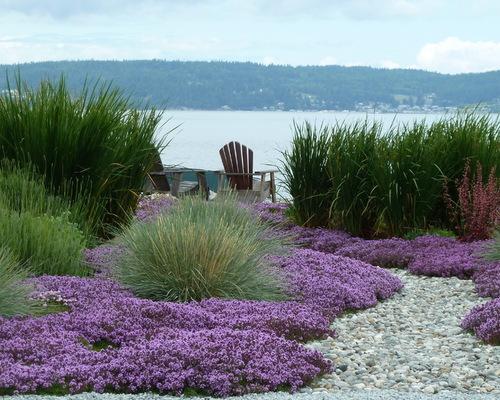 Oregon Coast Summer Landscaping