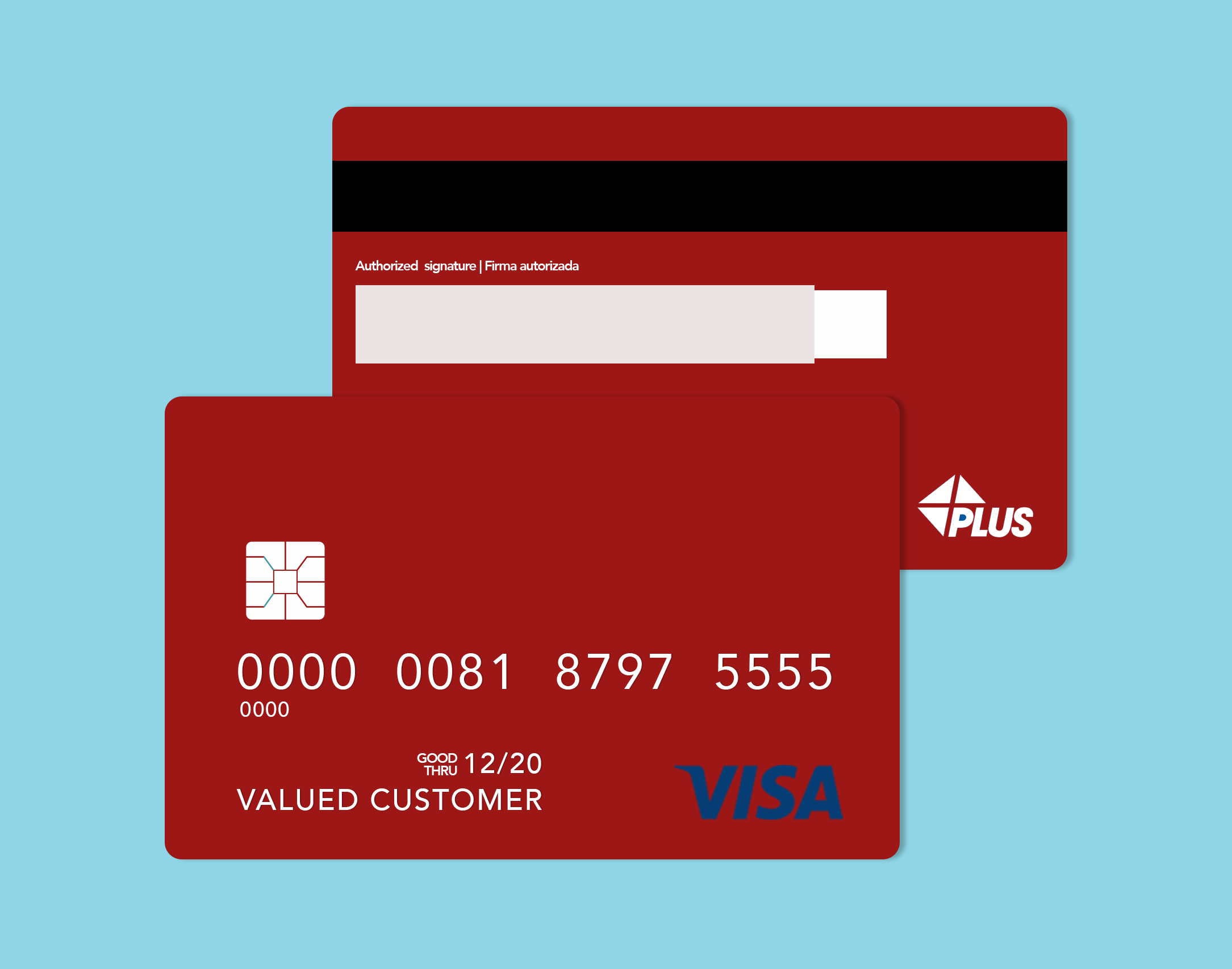 Vector of A Visa Credit Card