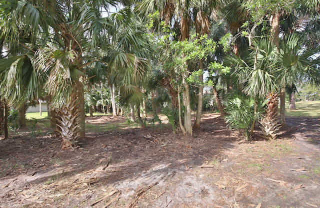 Pelican Bay property for Sale