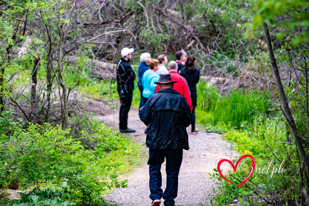 Group Hike in Westminster Woods and Pine Ridge Subdivision #LoveGuelph