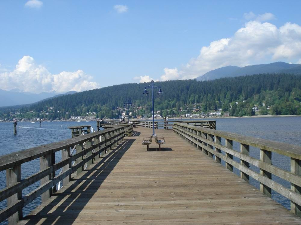 view of pier and water