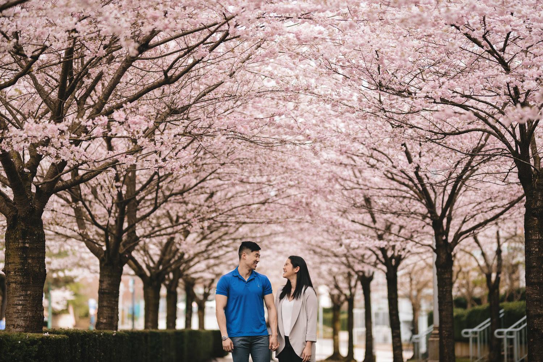 couple under cherry blossom trees