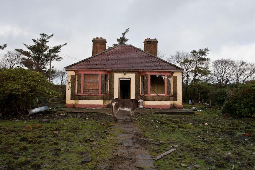 homerepairshouse