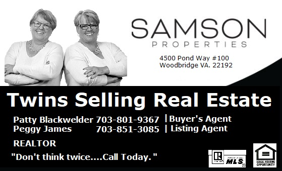 Twins Selling Real Estate Business Card