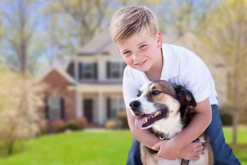 boy holding dog