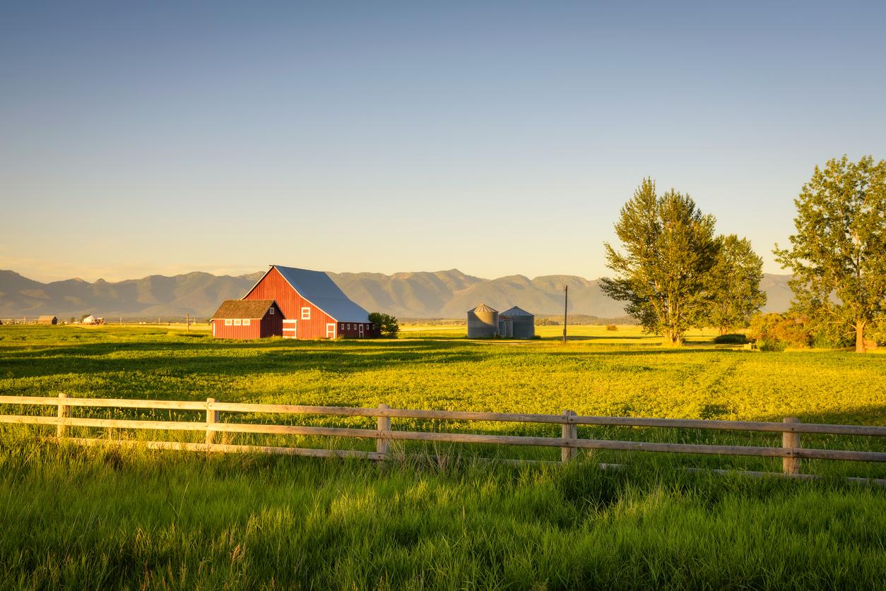 Barn on grass field